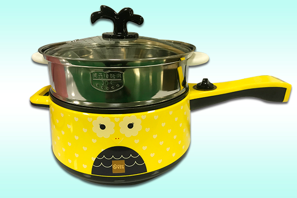 Multi-functional electric cooker with steamer