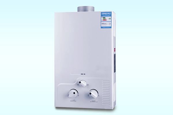 Flue water heater